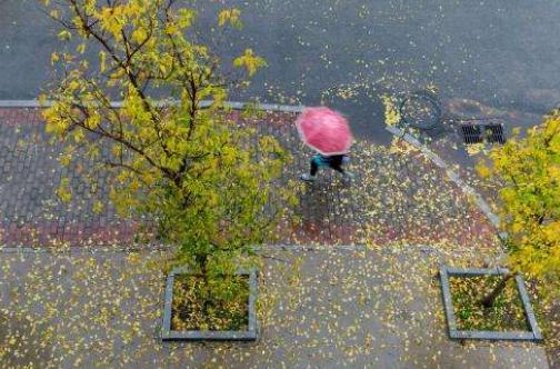 用心感受一场秋雨
