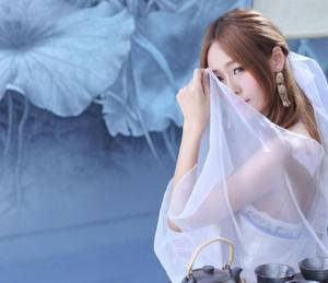 我曾爱你如微光免费阅读 赵锦辛x黎朔玻璃窗